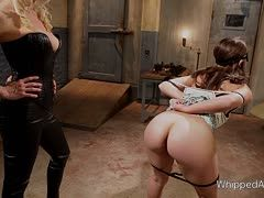 Lorelei Lee dominert Lesbenluder Remy La Croic